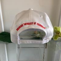 หมวก 10 ปี มหาวิทยาลัยเทคโนโลยีสุรนารี (ด้านหลัง)