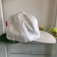 หมวก 10 ปี มหาวิทยาลัยเทคโนโลยีสุรนารี (ด้านข้าง)